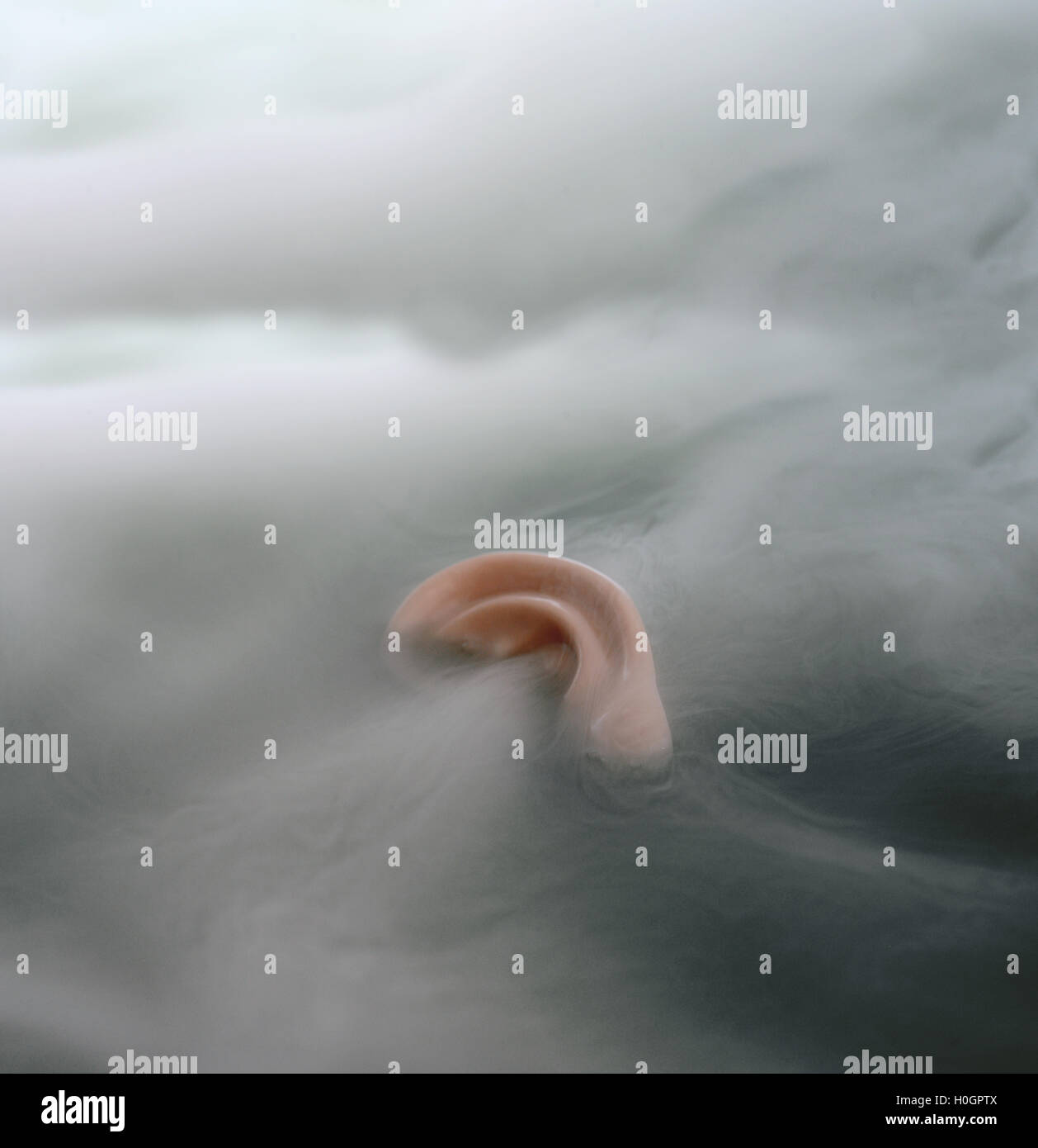 Flottant dans le brouillard de l'oreille Photo Stock