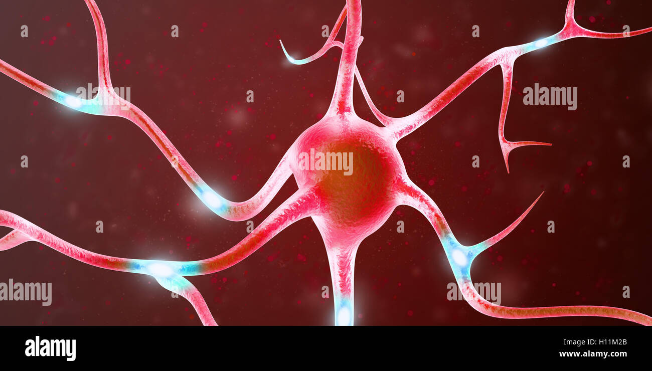Les neurones dans le cerveau avec l'accent d'effet. Le rendu 3D Photo Stock