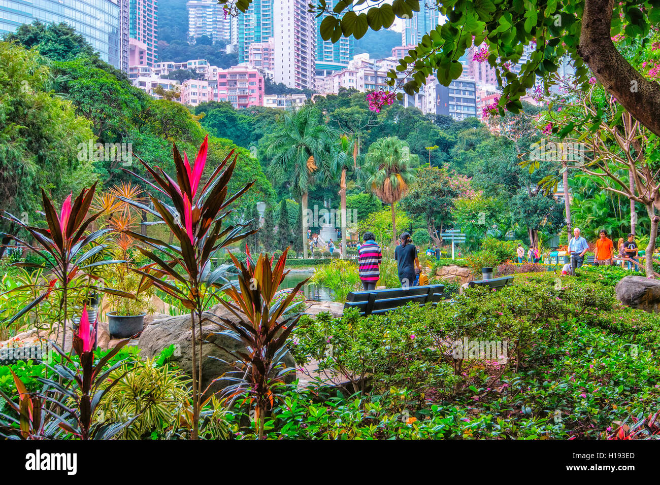 Parc de Hong Kong Photo Stock