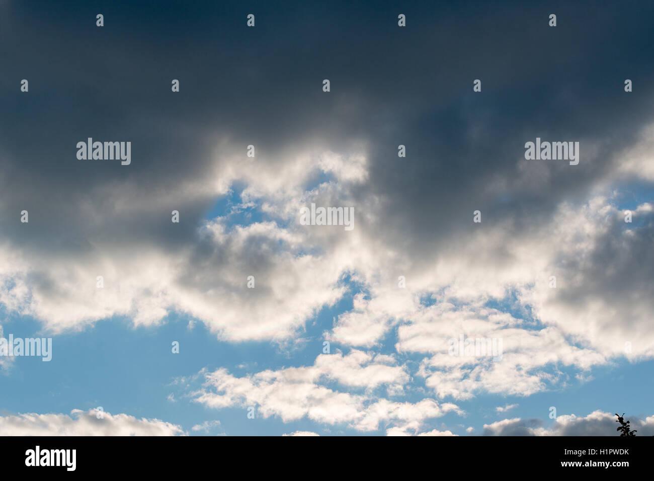 Gros nuage noir dans le ciel bleu Photo Stock