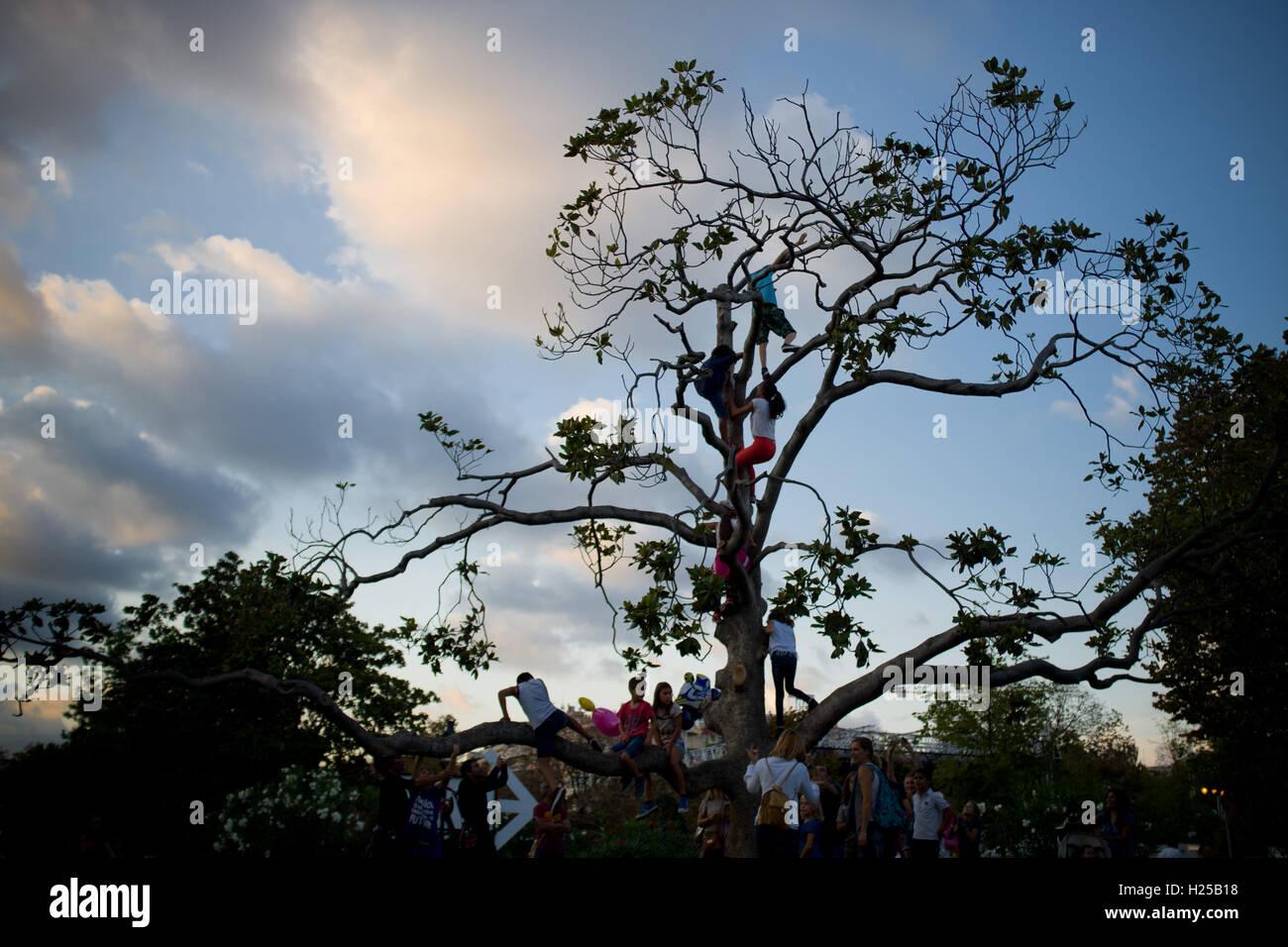 Barcelone, Catalogne, Espagne. Sep 24, 2016. Les enfants bénéficient d'un arbre d'escalade au Parc de la Ciutadella de Barcelone. © Jordi Boixareu/ZUMA/Alamy Fil Live News Banque D'Images