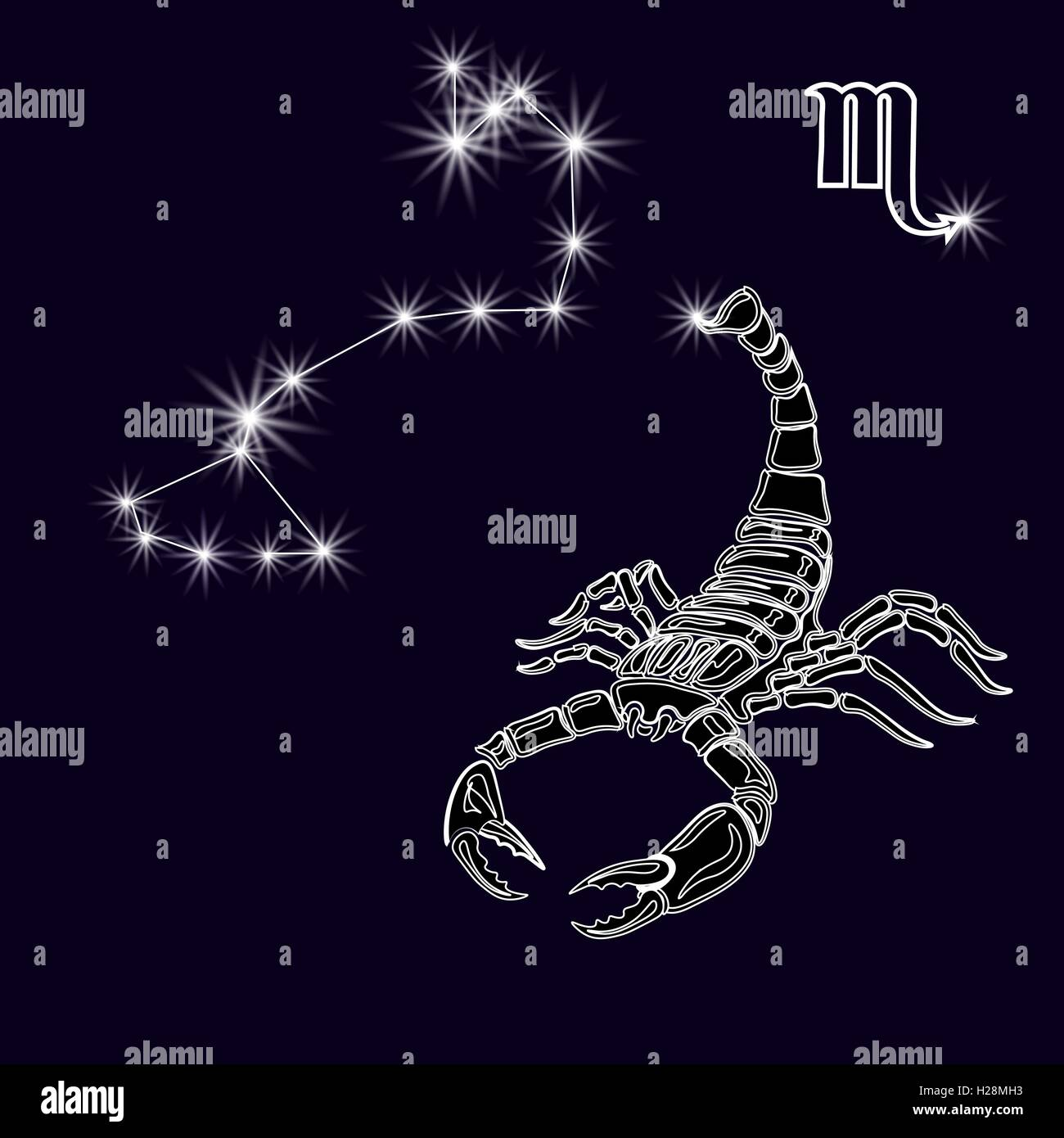 Scorpion Tattoo Photos Scorpion Tattoo Images Page 3 Alamy