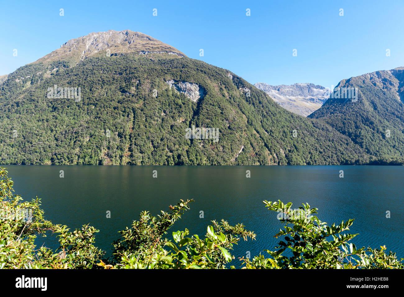 Lake Gunn dans le Parc National de Fiordland. Île du sud de la Nouvelle-Zélande Banque D'Images