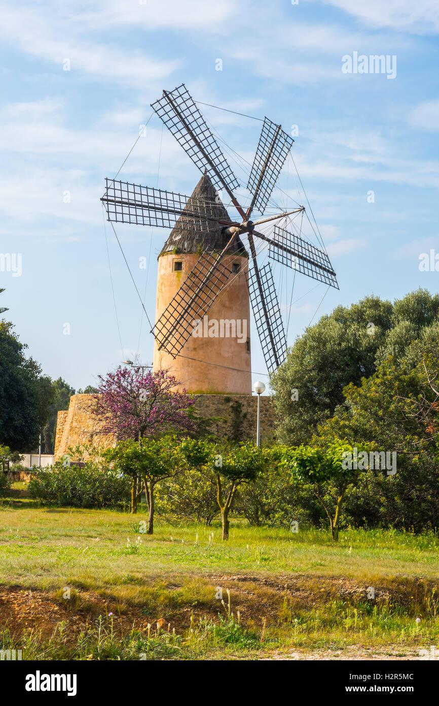 Moulin à vent typique, Majorque Photo Stock