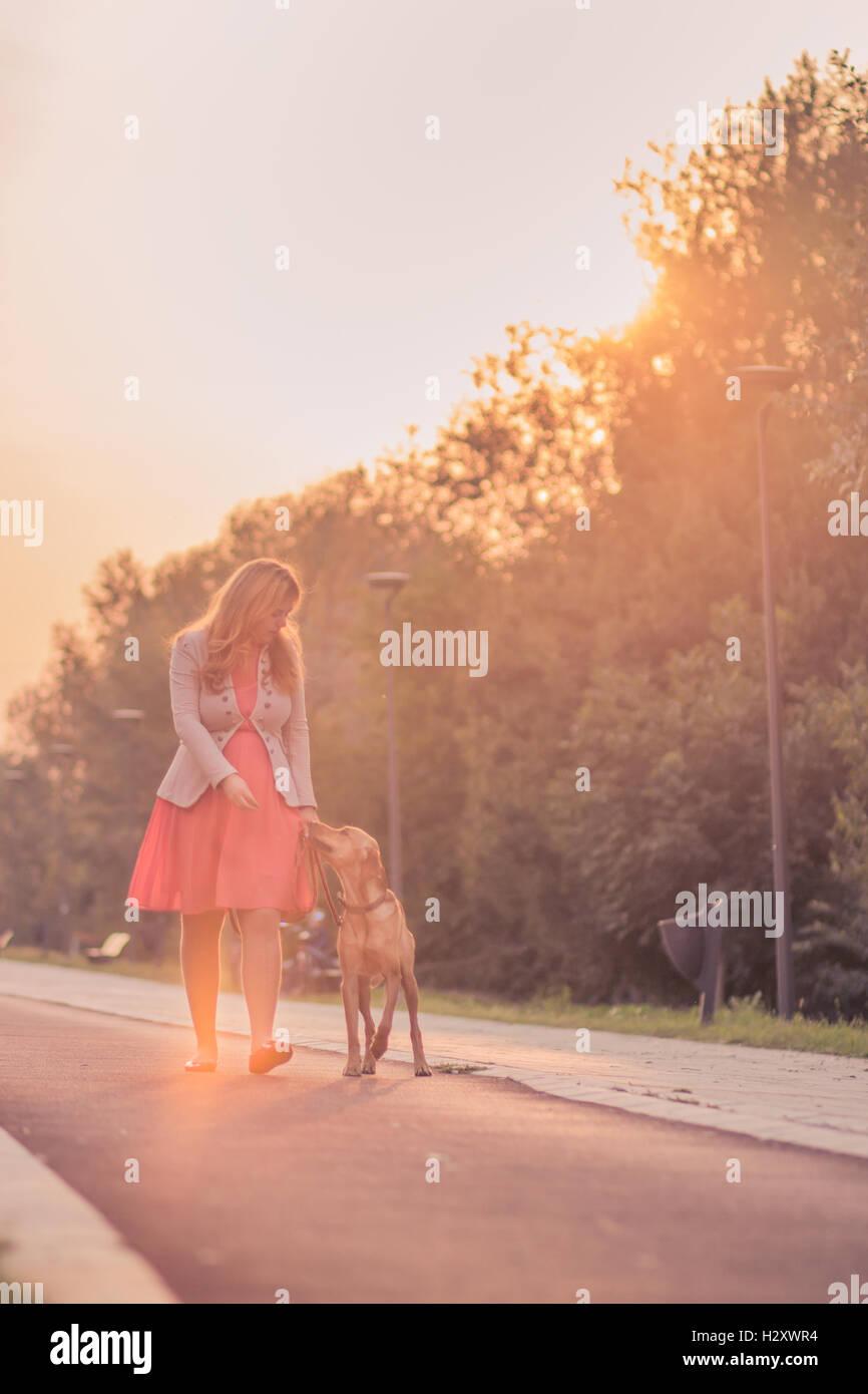 Young adult woman walking dog outdoors journée ensoleillée ciel jaune orange Photo Stock