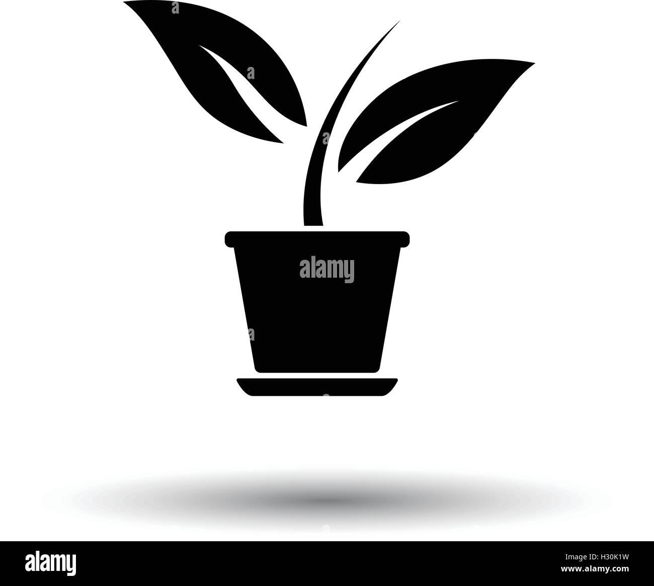 Plante En Pot De Fleurs Fond Blanc Avec Design De L Ombre Vector