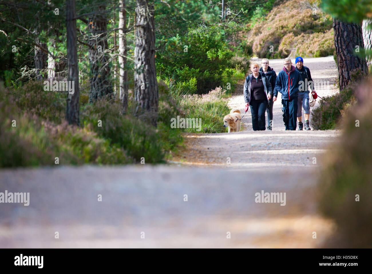 Les marcheurs profiter du soleil autour de Loch an Eilein et le Rothiemurchus Forest, Rothiemurchus, Rothiemurchus, Banque D'Images