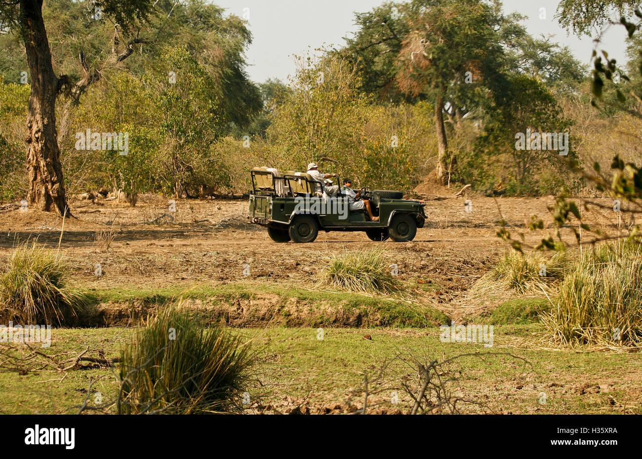 Mana Pools National Park. Zimbabwe Photo Stock
