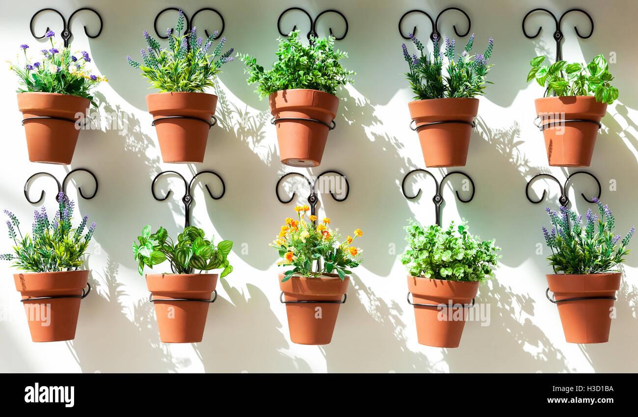 Arriere Plan De Pots De Fleurs Accroche Au Mur Banque D Images