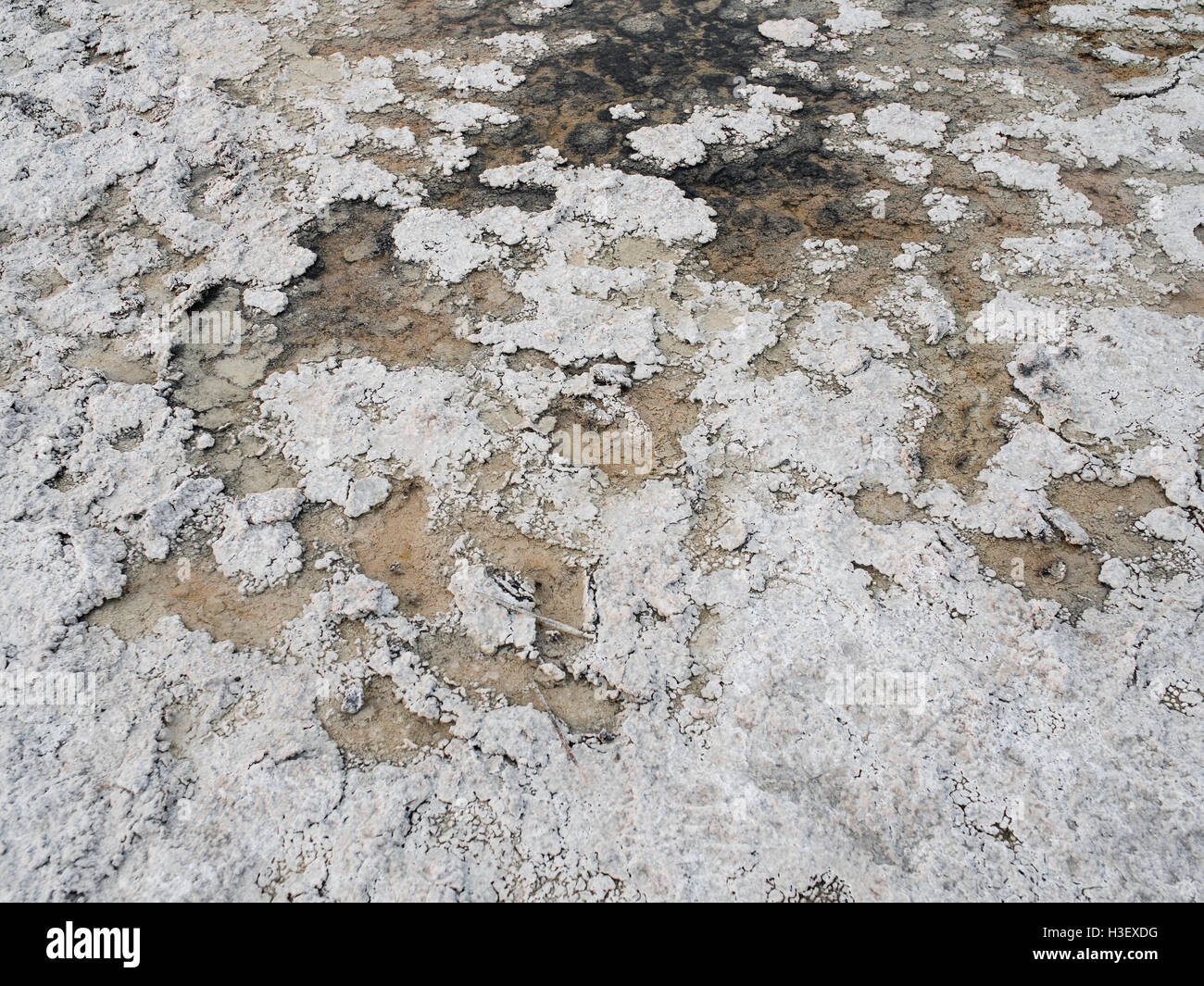 Bassin de Badwater - Death Valley National Park Photo Stock