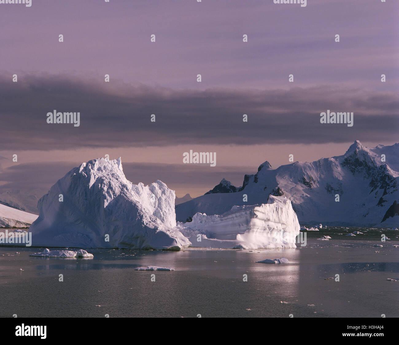 Les icebergs au large de la Terre de Graham. Photo Stock