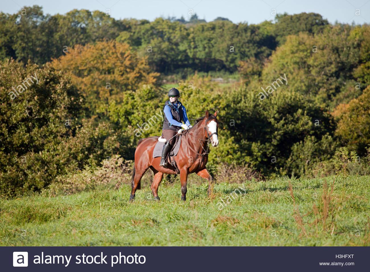 Jeune femme équitation dans le champ ouvert UK Photo Stock