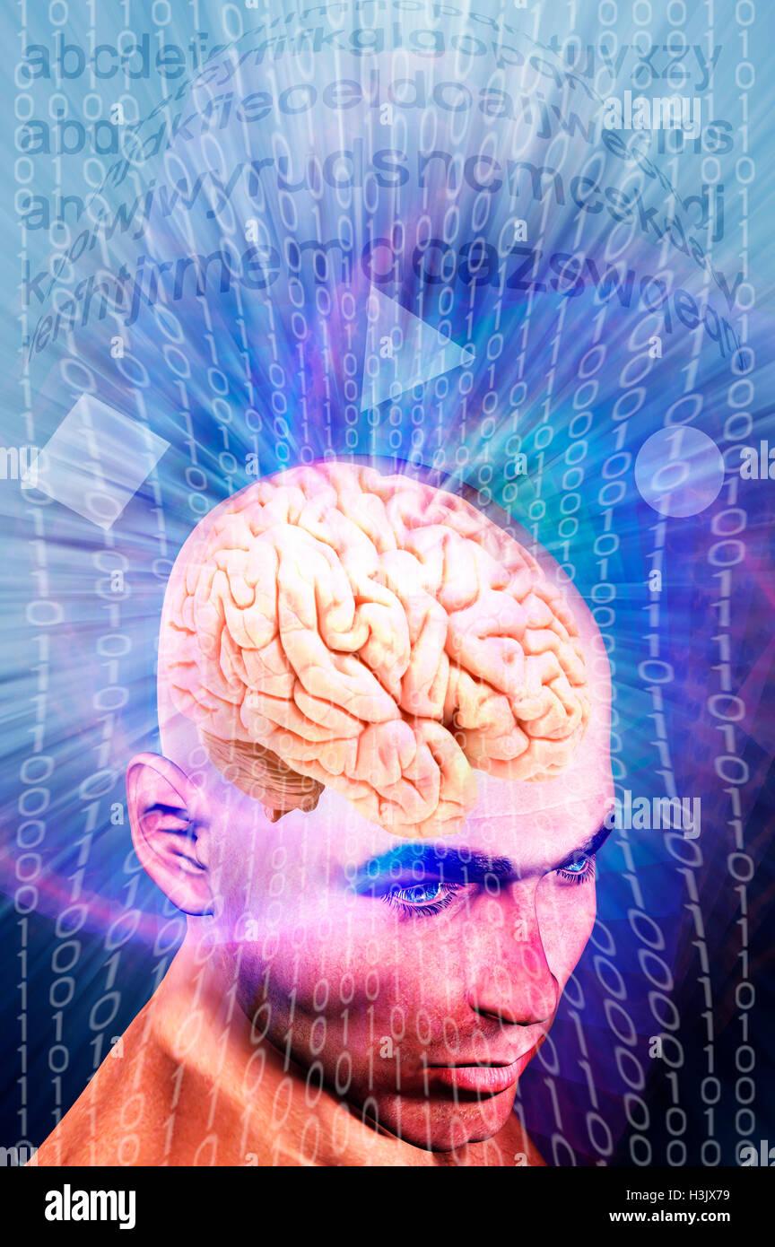 Concept de formation de cerveau en ligne Photo Stock