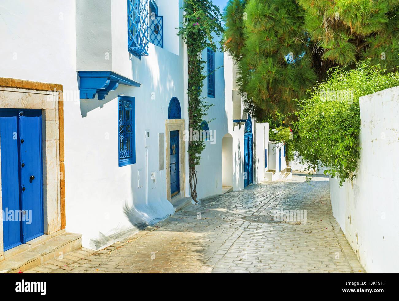 L'agréable promenade sur la rue ombragée de Sidi Bou Said avec posh villas et chalets touristiques, Photo Stock