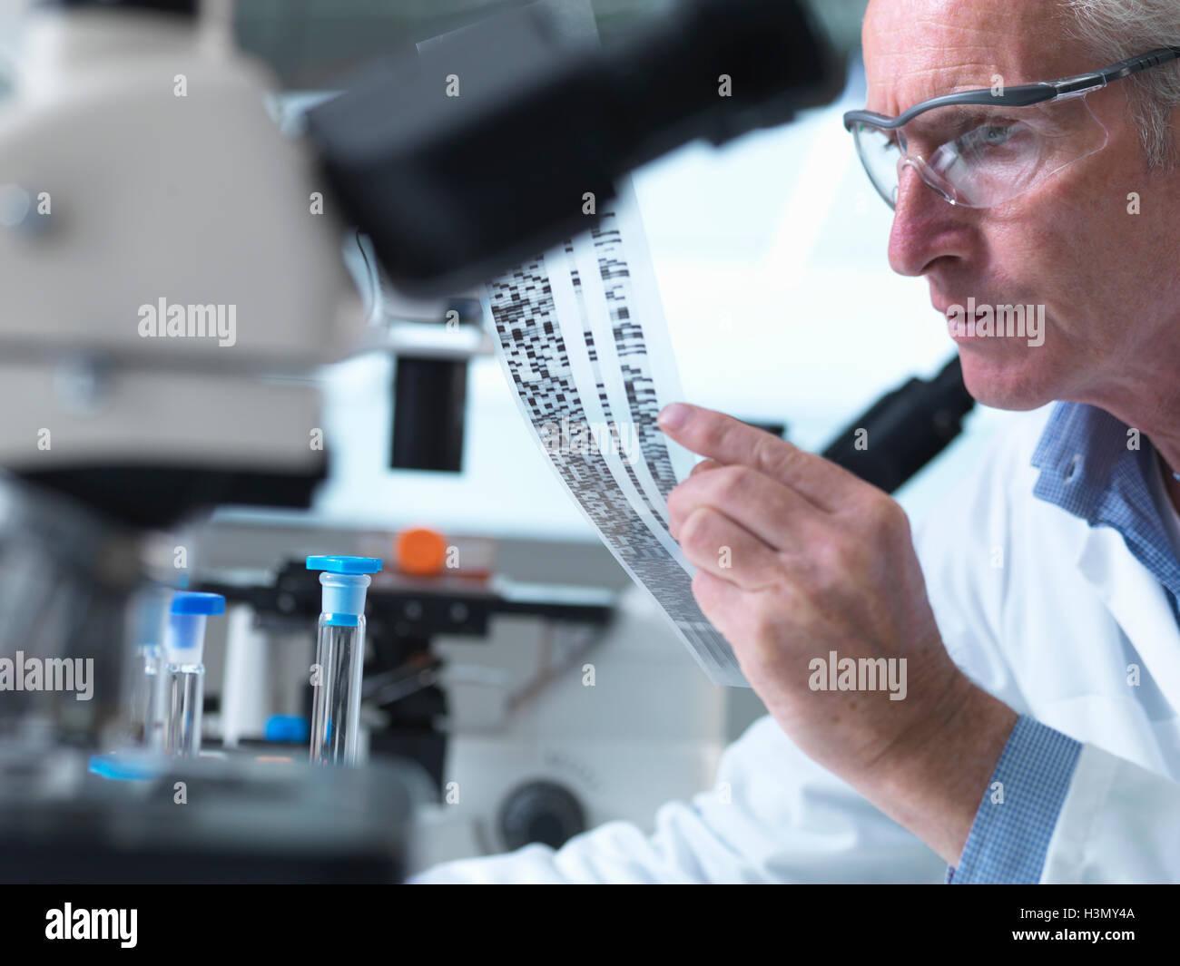 Chercheur titulaire d'un gel d'ADN au cours d'une expérience génétique dans un laboratoire Photo Stock