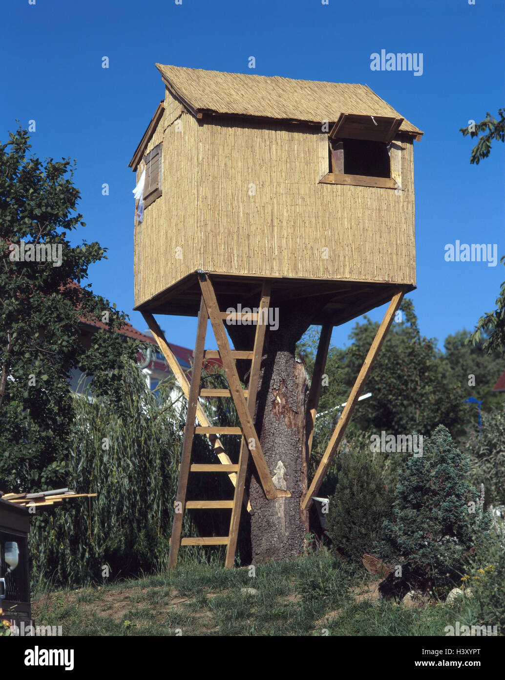 Jardin, tree-house, jardin, arbre, bois, maison de bois ...