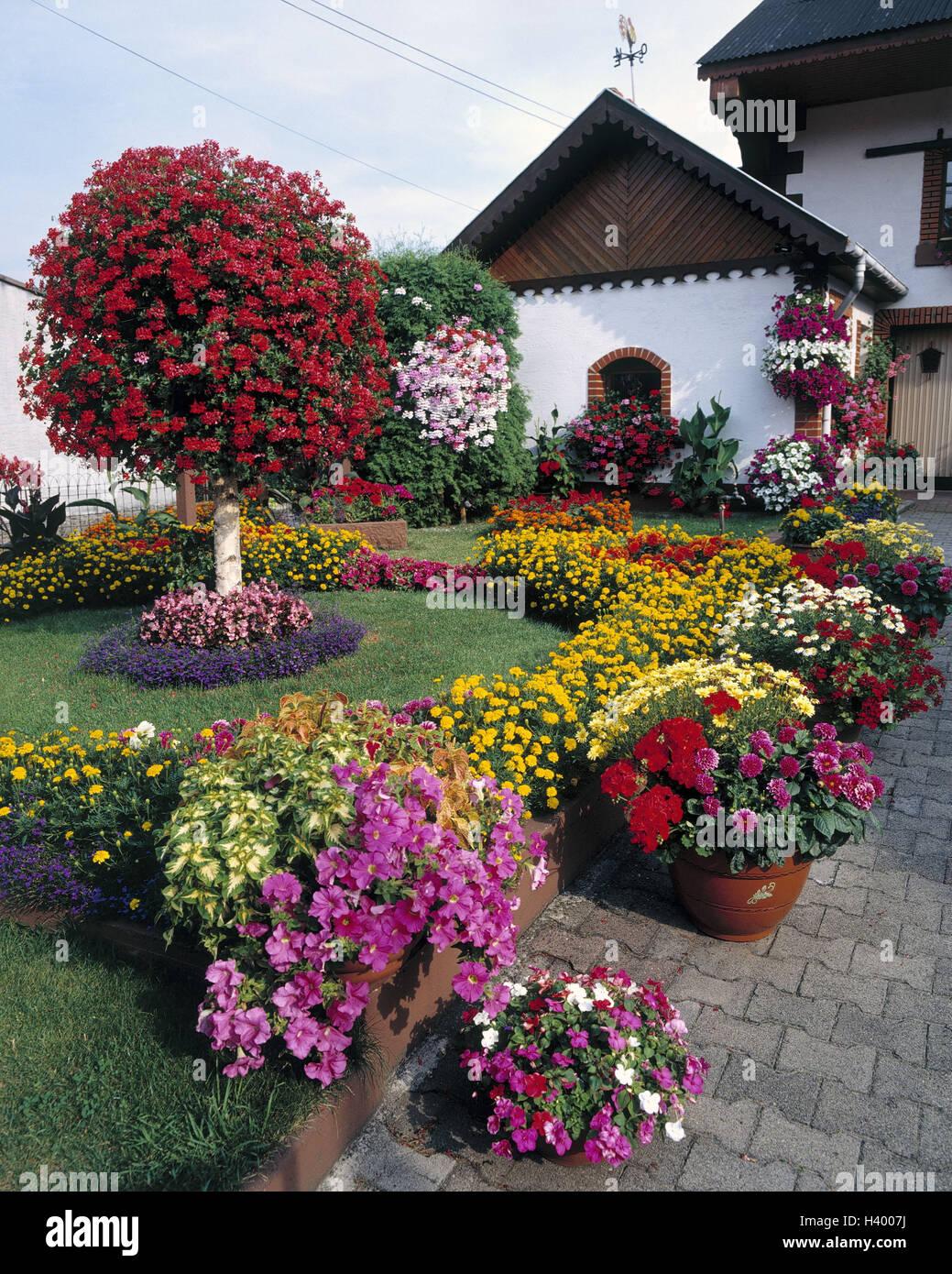 France, Alsace, maison d\'habitation, jardin, décoration ...