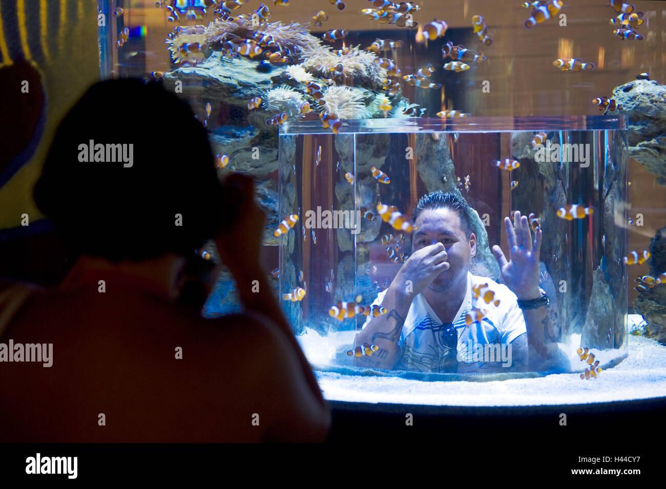 Au sud, l'Afrique, Le Cap, False Bay, l'aquarium des deux océans, visiteur, Photo Stock