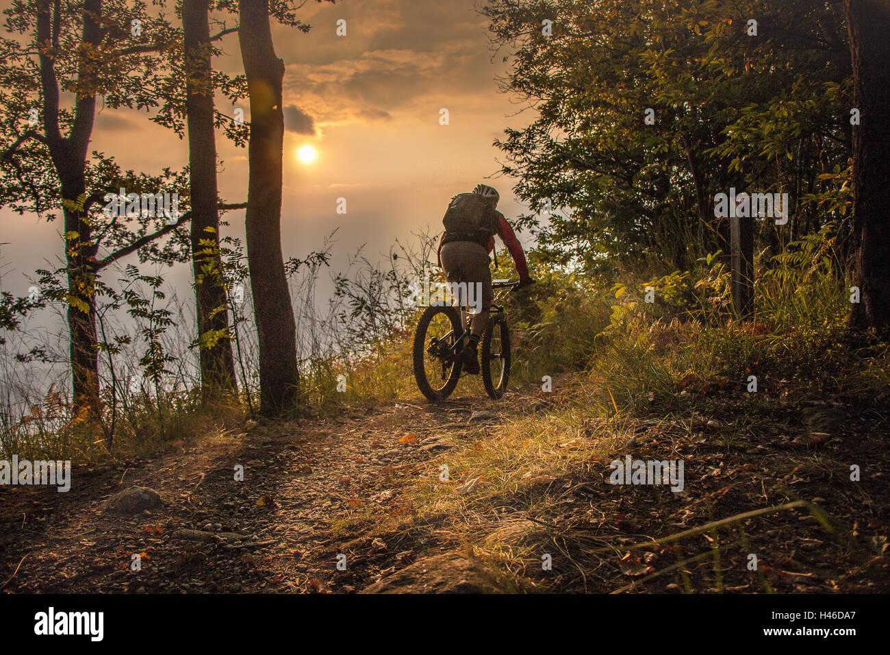 Vélo de montagne jusqu'au coucher du soleil Photo Stock