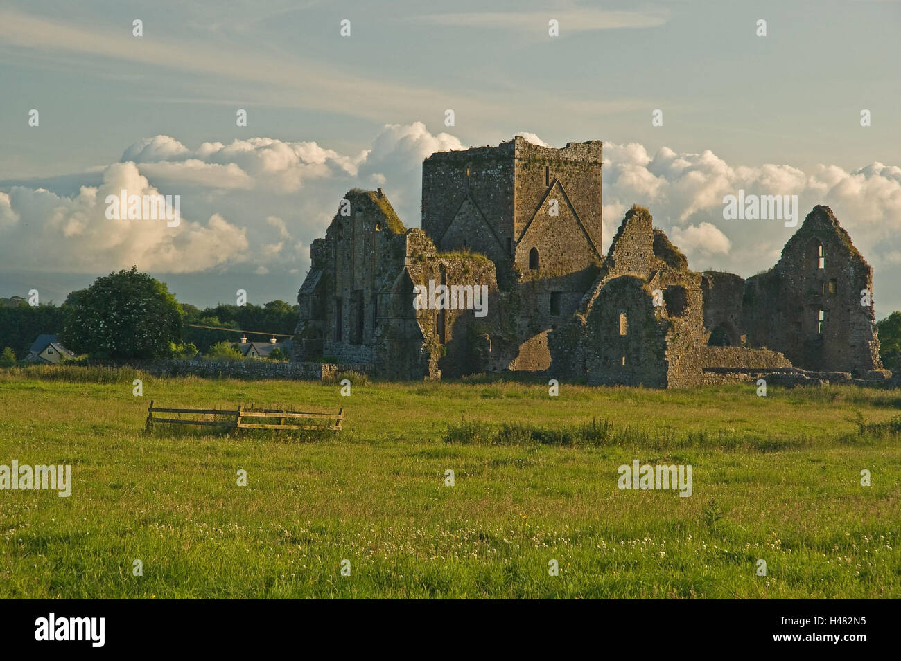 L'Irlande, Hore Abbey, cloître ruine, Photo Stock