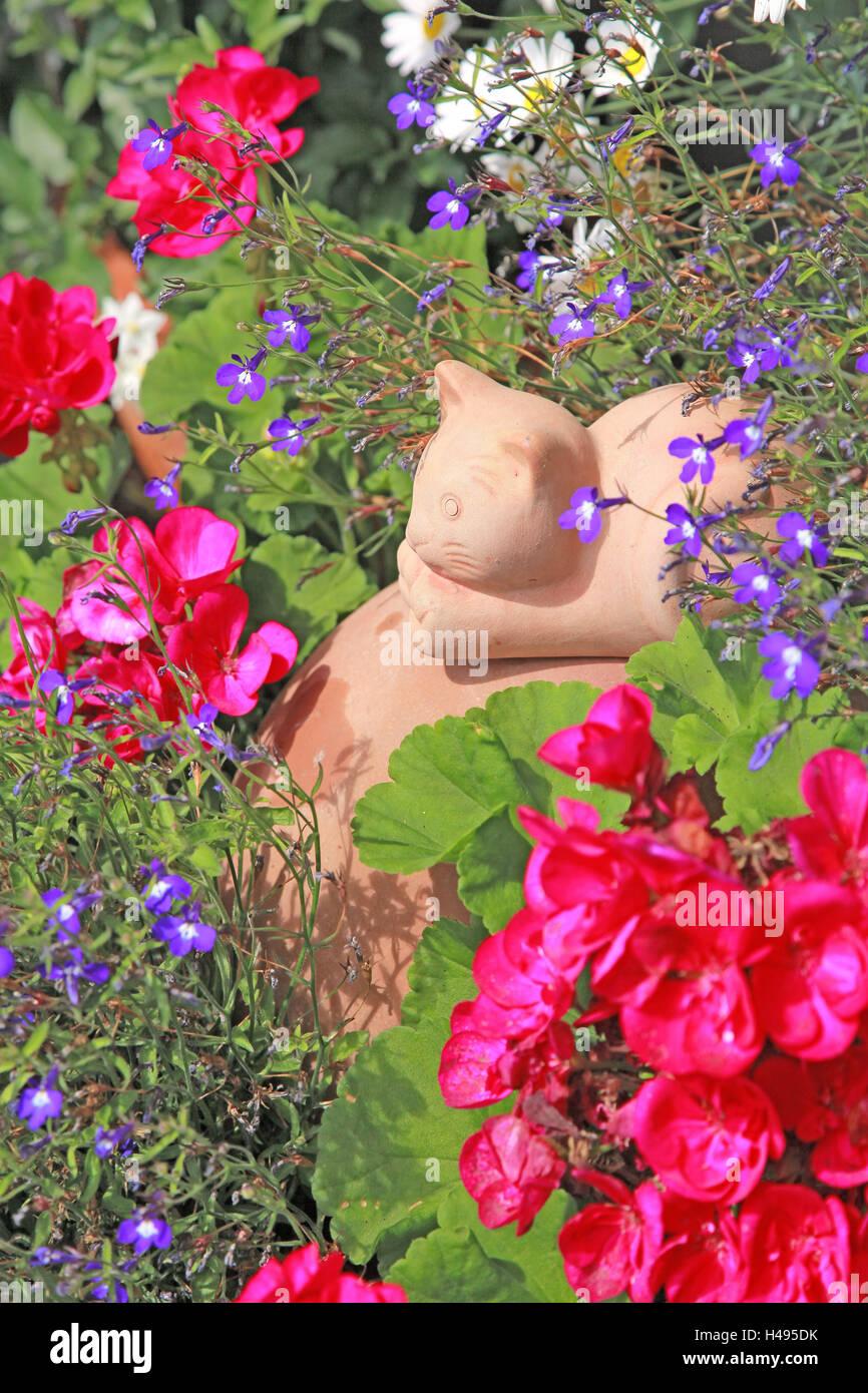 Fleurs, ton chat, ton chiffre, chat, fleurs de jardin ...