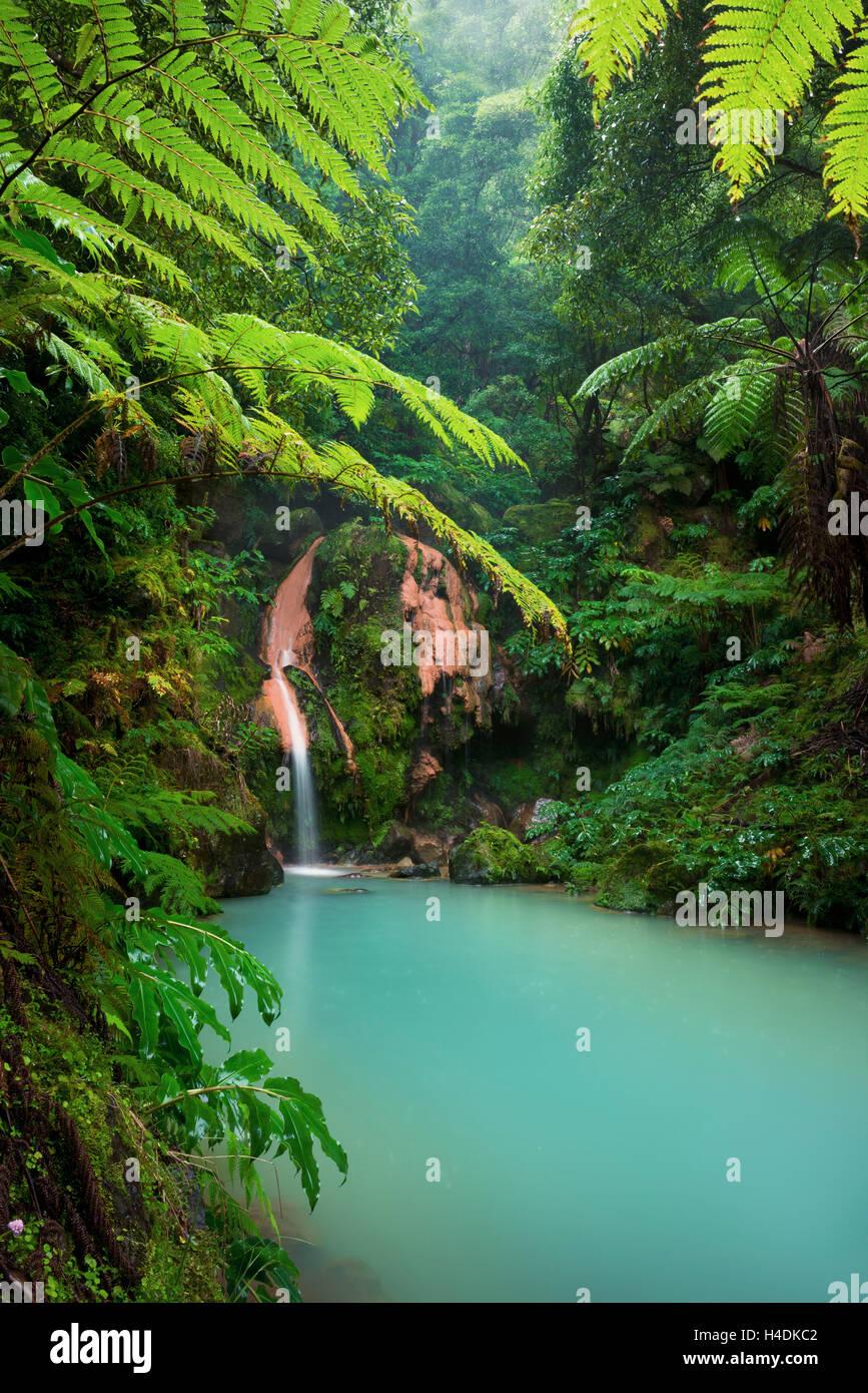 Cascade, Caldeira Velha, Açores, Portugal Photo Stock