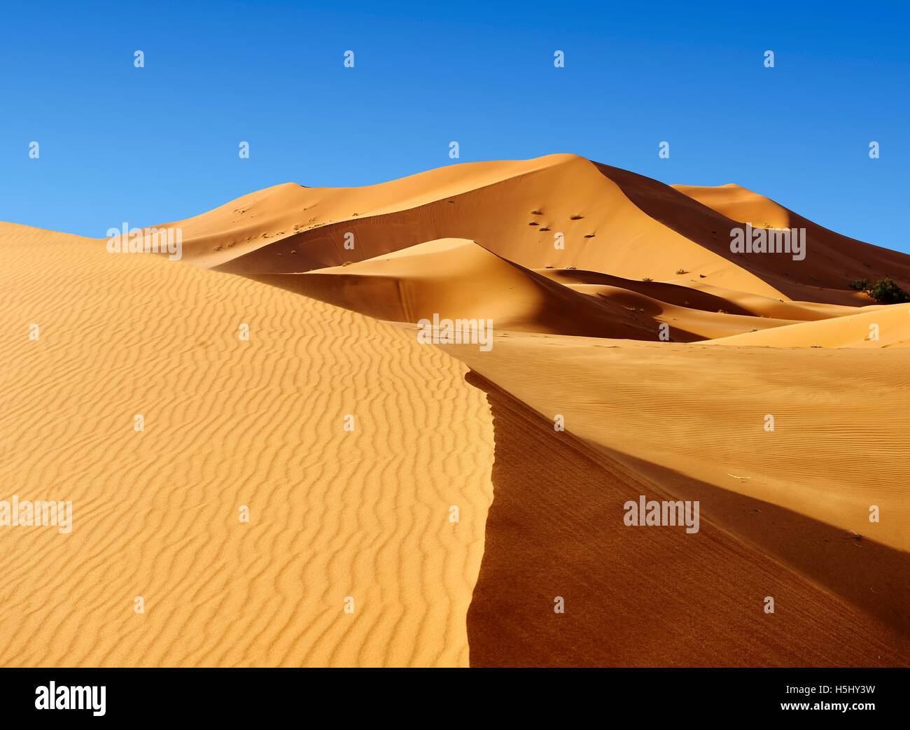 Sahara dunes de l'erg Chebbi Merzouga, Maroc, Afrique Photo Stock