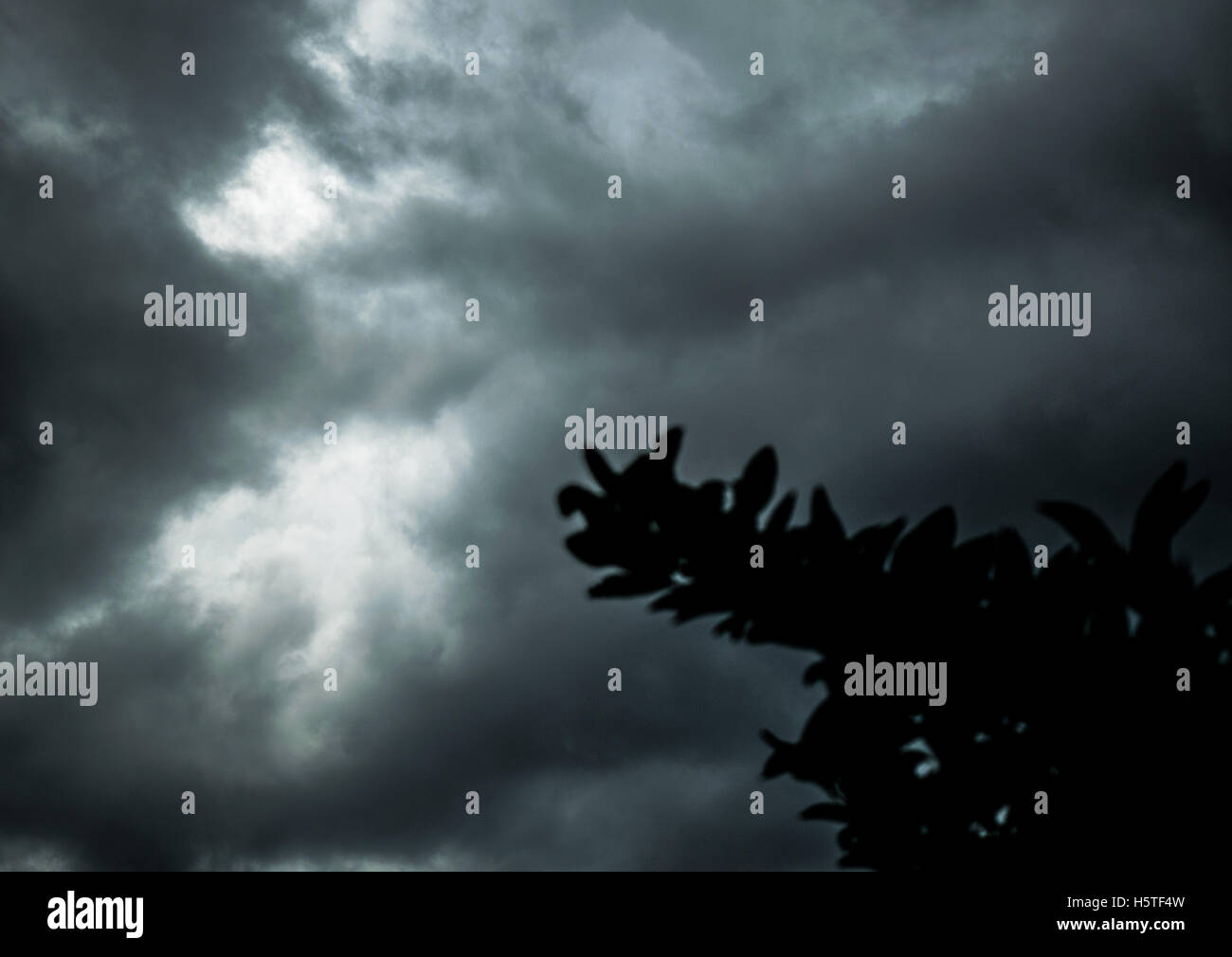 Nuage noir Photo Stock
