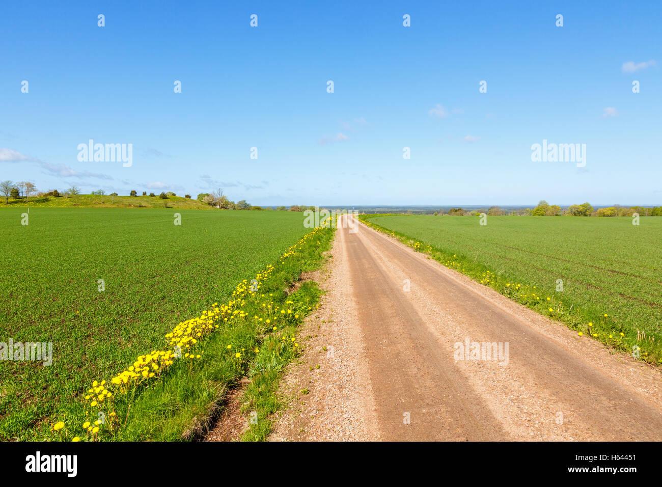 Route de gravier à l'horizon à travers champs Photo Stock