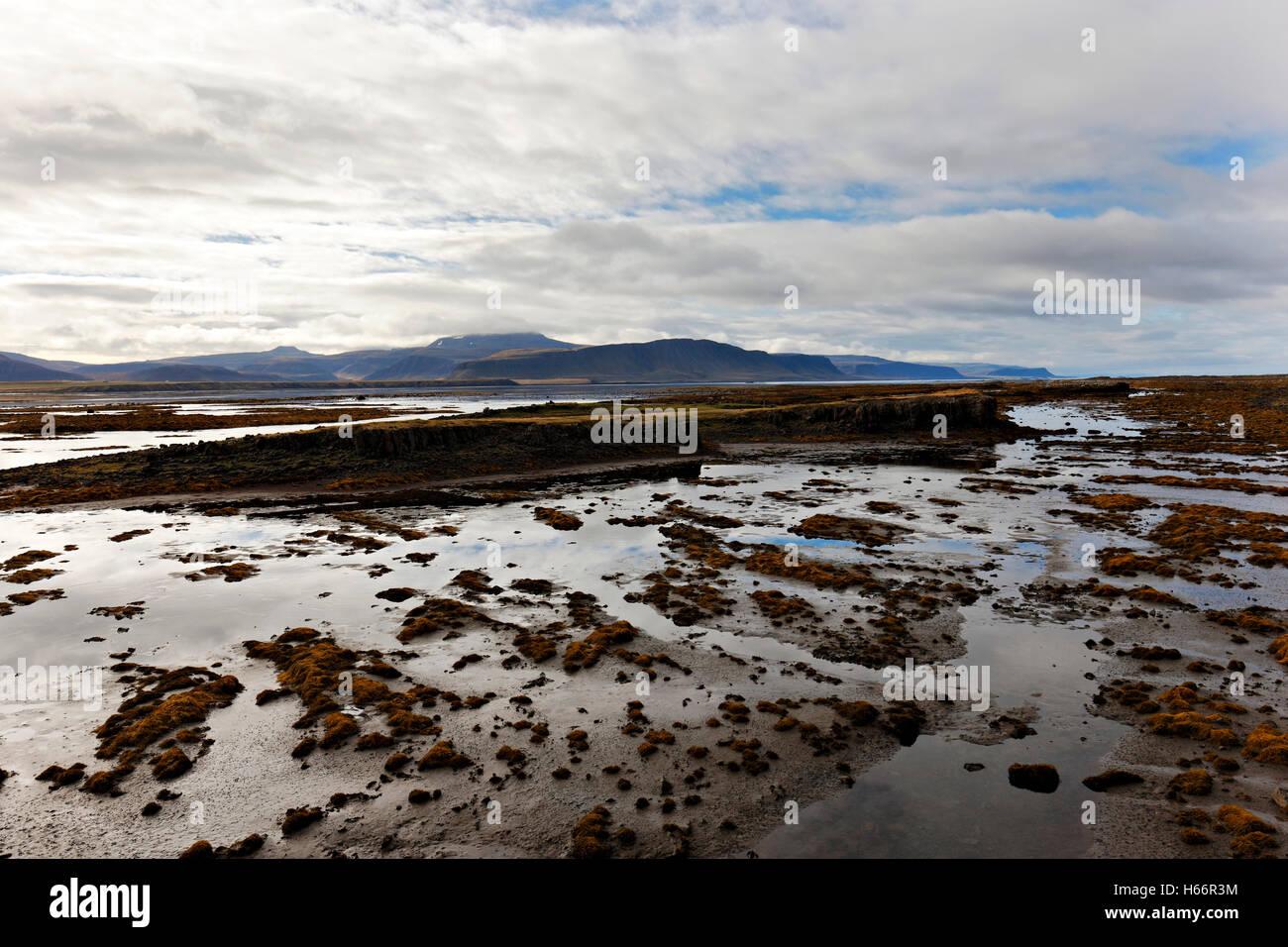 Paysage de fjord, à l'ouest de l'Islande, de l'Atlantique Nord, Europe Photo Stock