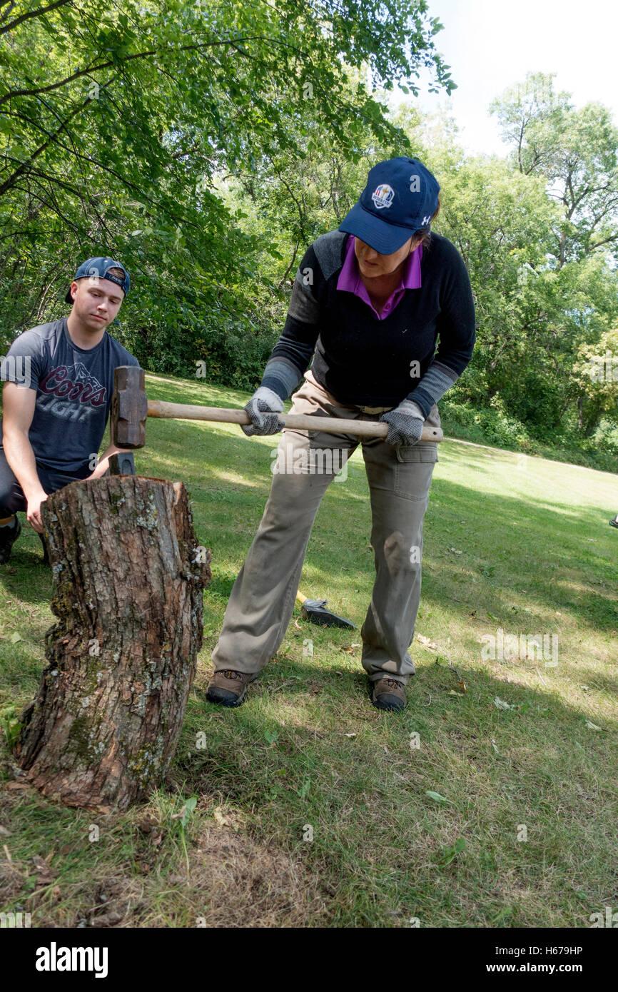 Fractionnement du bois de chauffage avec journal femme sledgehammer alors que le fractionnement du fils est titulaire Photo Stock