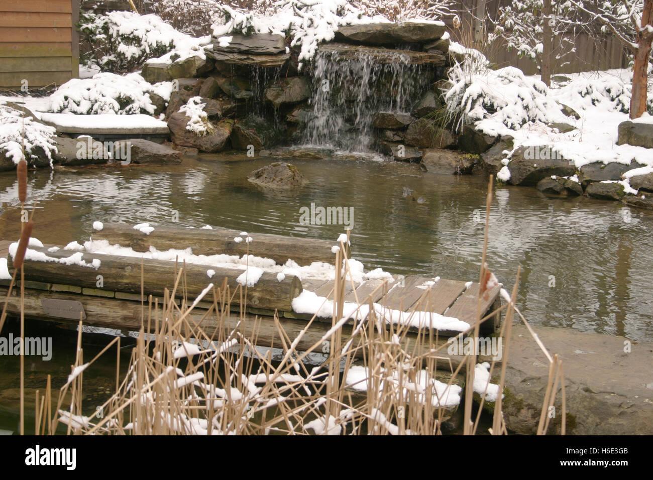 L'hiver au Jardin Botanique à Cleveland, Ohio Photo Stock