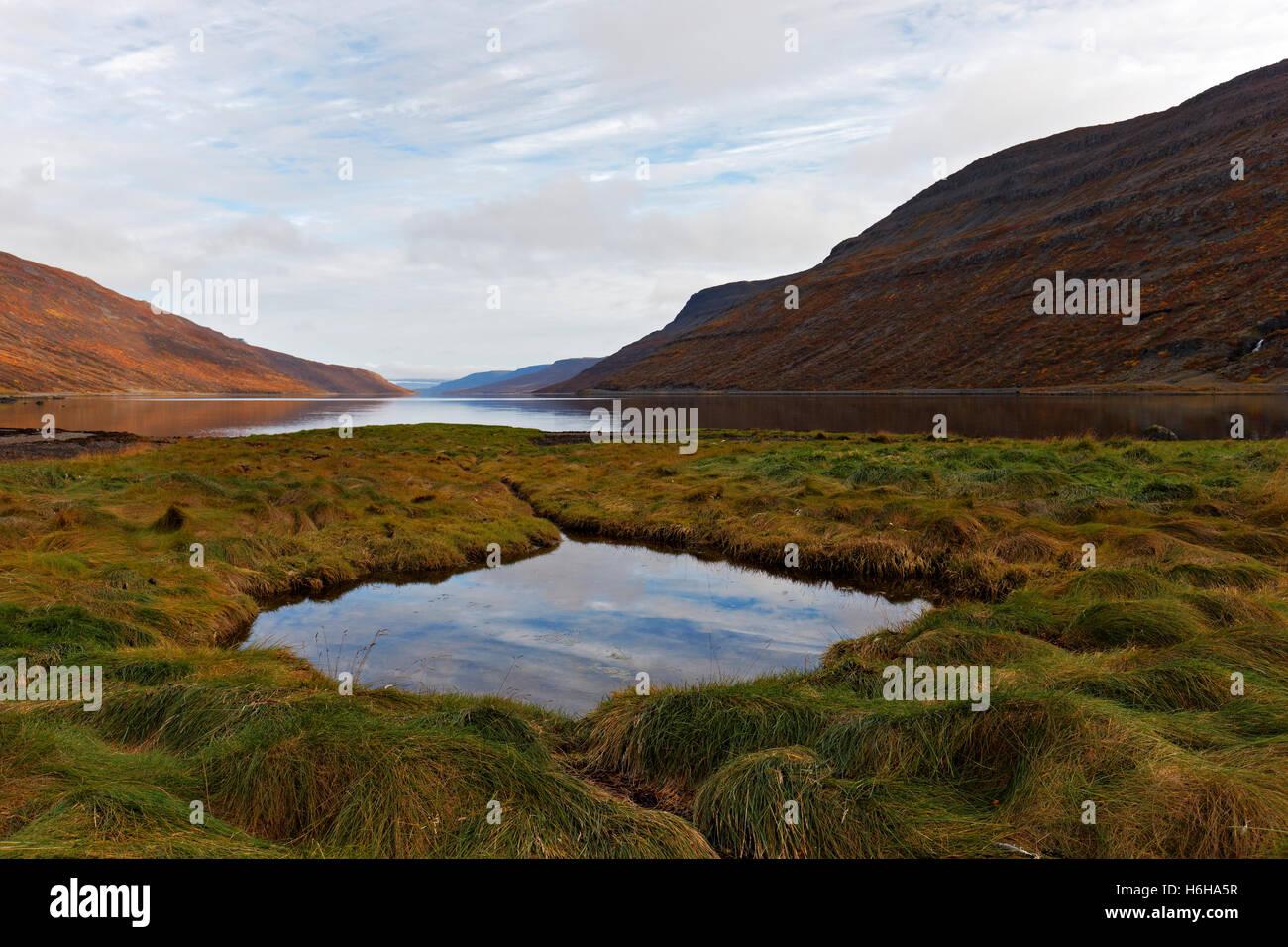 Paysage, Hestfjordur, Westfjords, l'Islande, de l'Atlantique Nord, Europe Photo Stock