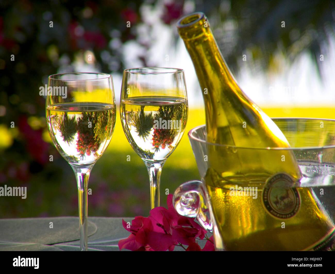 Verres à Vin En Cristal De Vin Et Une Bouteille De Godet