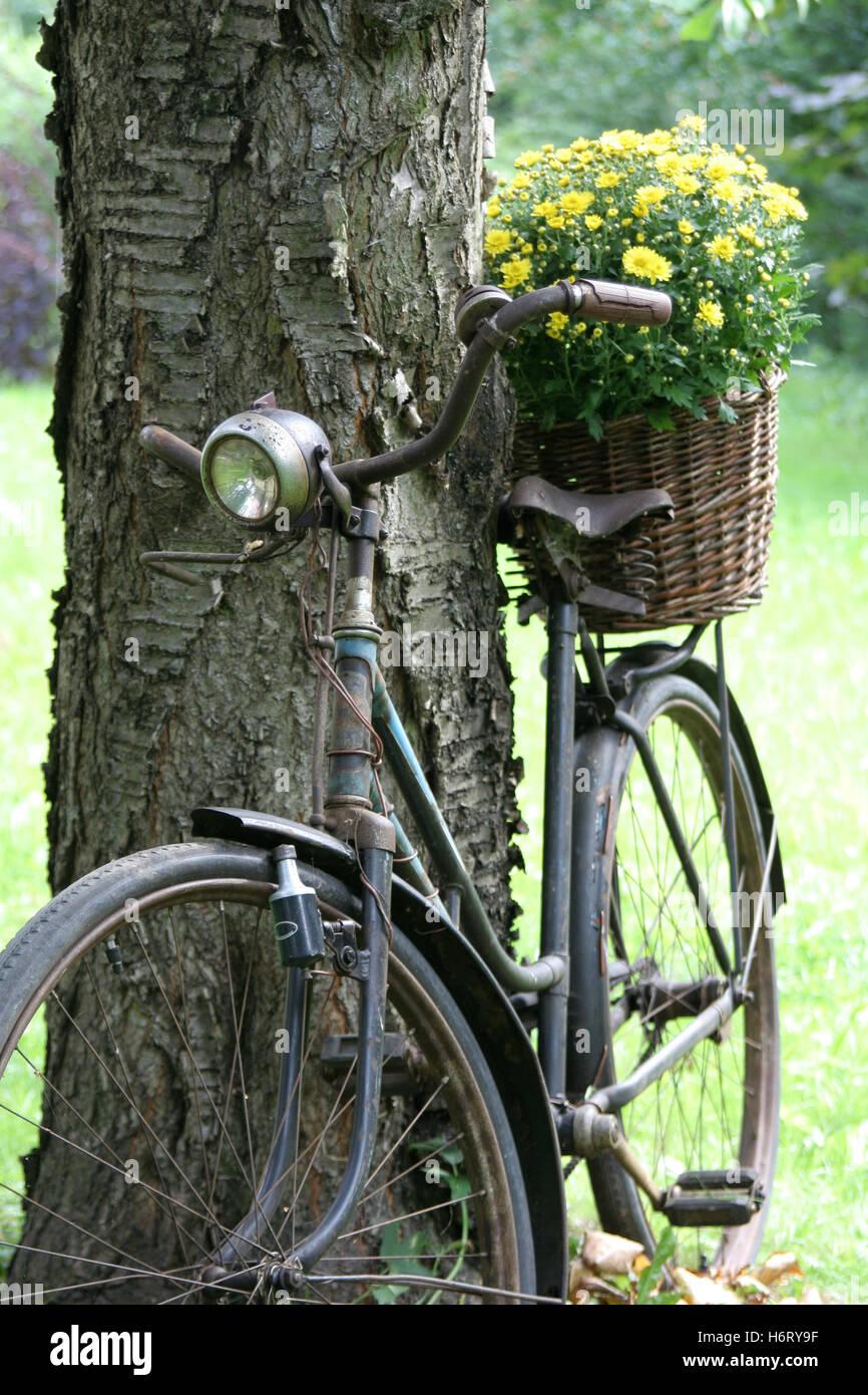 Vieux vélo comme décoration de jardin panier de fleurs Banque D ...