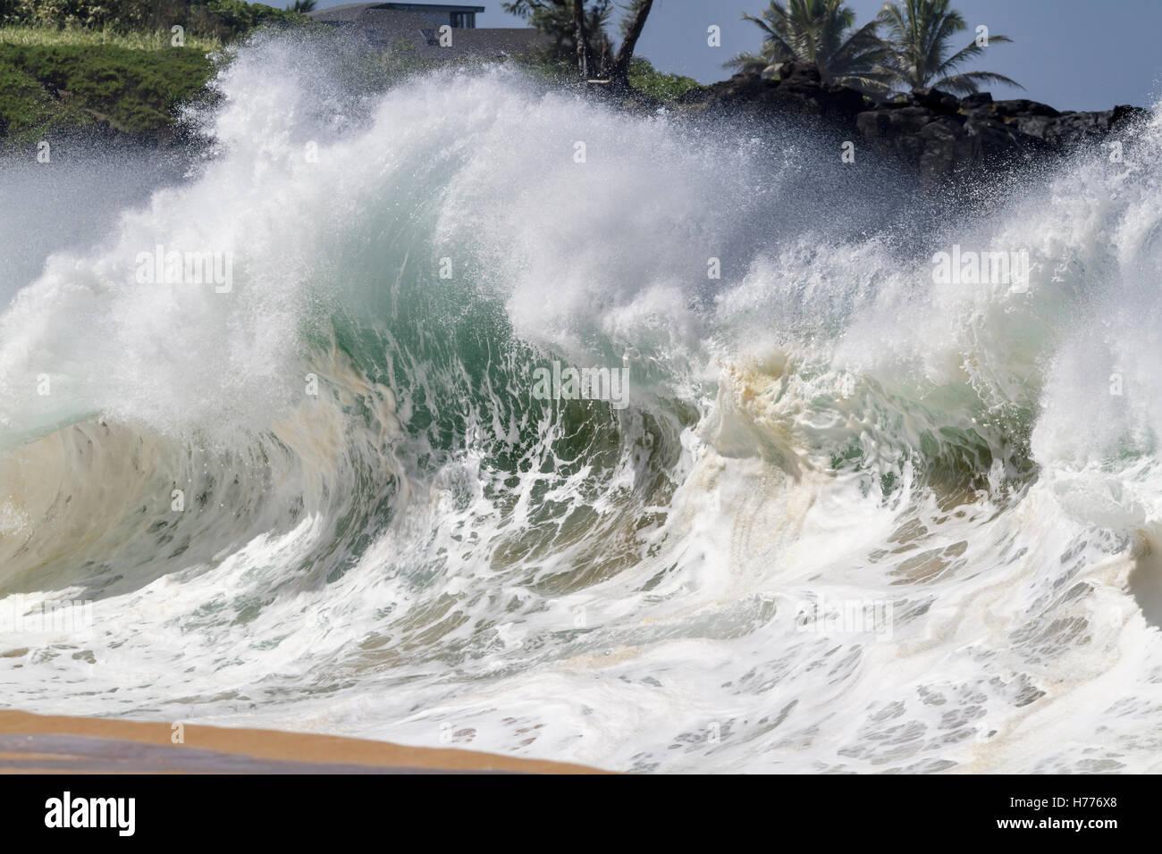 Shore break Big wave à Waimea Bay north shore Oahu Hawaii Banque D'Images