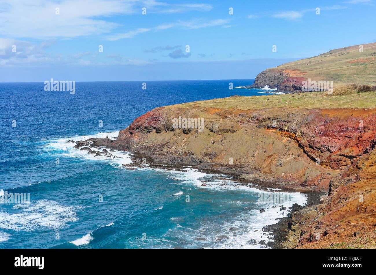 Paysage littoral accidenté de l'île de Pâques, Chili Photo Stock