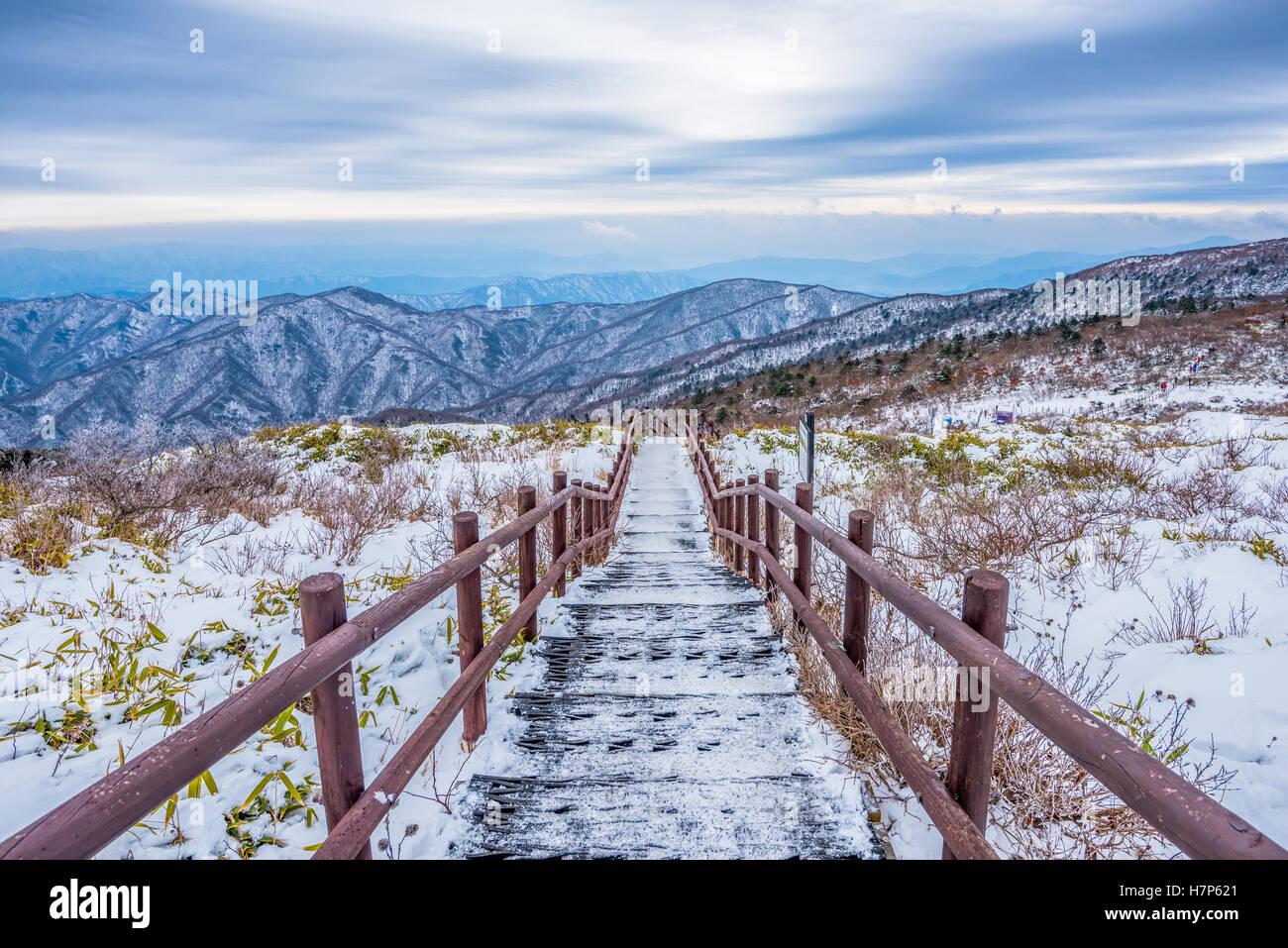 Paysage hiver neige blanche de montagne en Corée Photo Stock