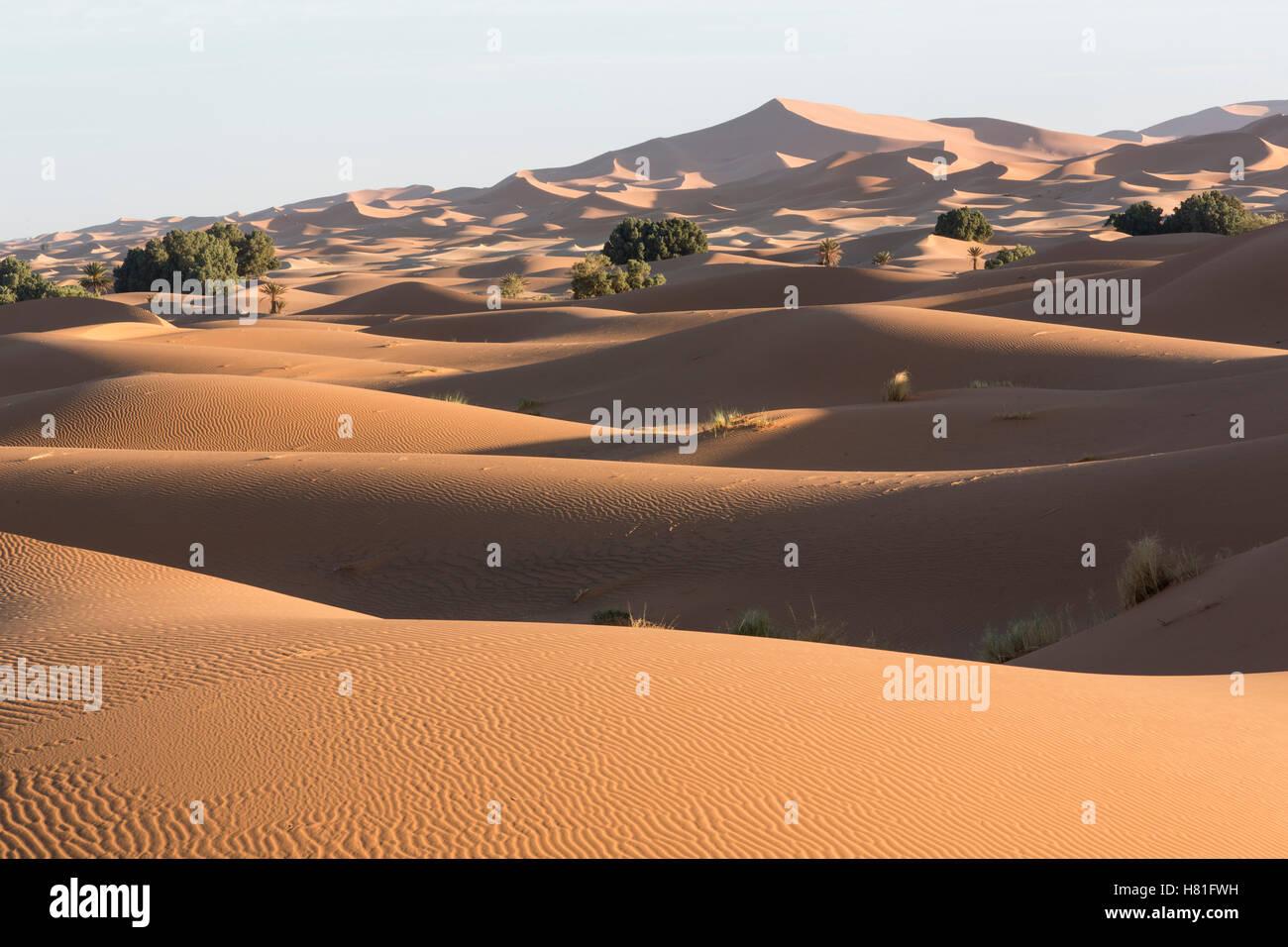Le Maroc, l'Erg Chebbi, dunes de sable dans le désert du Sahara, près de Merzouga Photo Stock