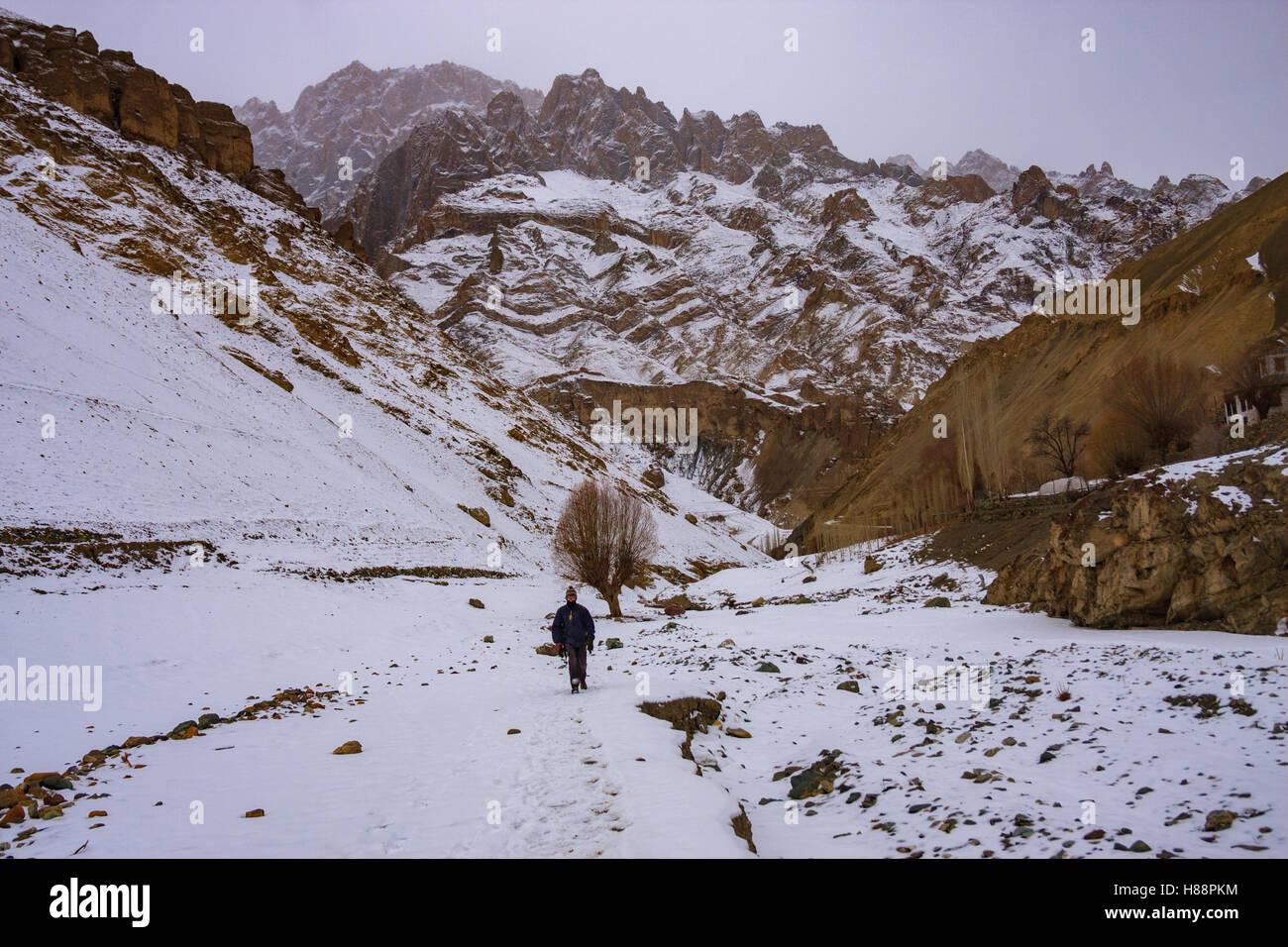 Le Ladakh Trek d'hiver Photo Stock