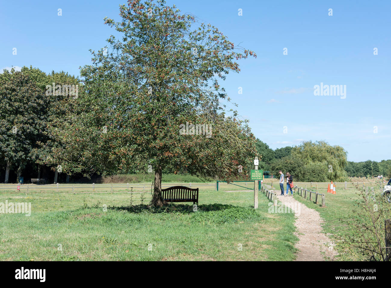 Ripley vert, Ripley, Surrey, Angleterre, Royaume-Uni Photo Stock