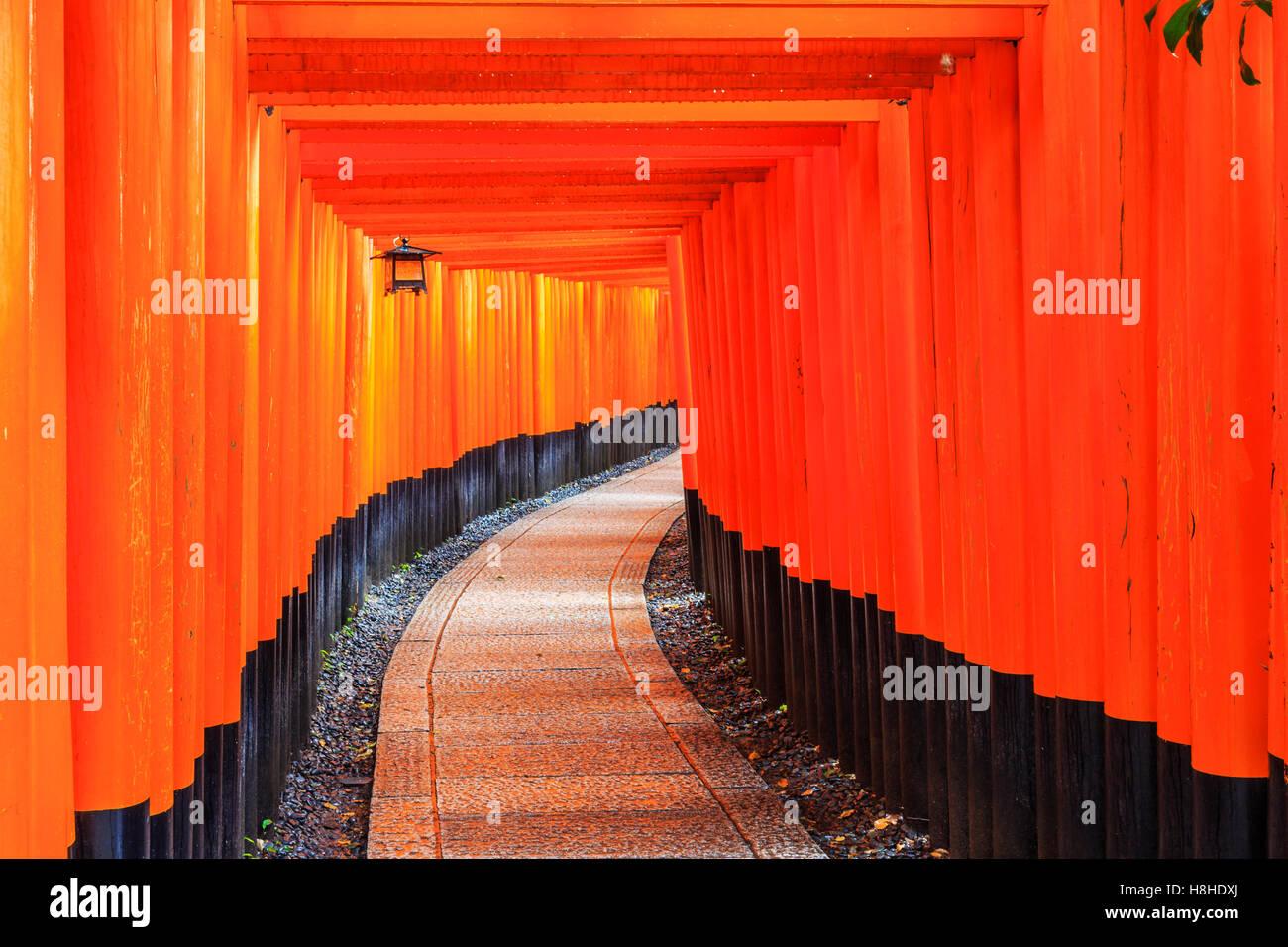 Kyoto, Japon. Les portes dans le sanctuaire Fushimi Inari. Photo Stock
