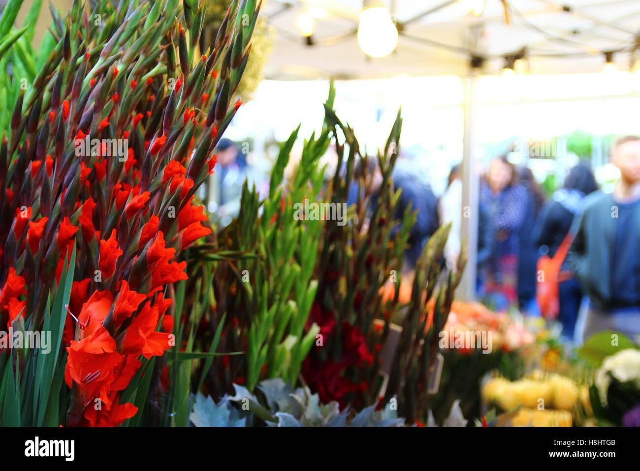 Le Columbia Road Flower Market 2/8 Photo Stock