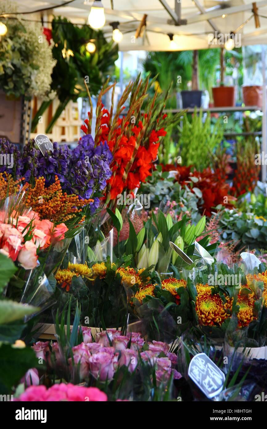 Le Columbia Road Flower Market 5/8 Photo Stock