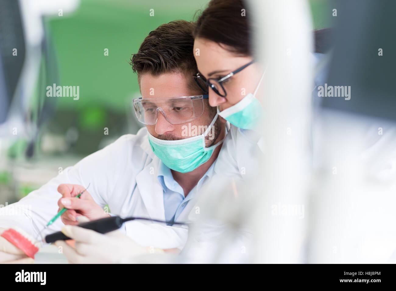 Les jeunes étudiants de la stomatologie occupé avec précaution sur des modèles anatomiques Photo Stock