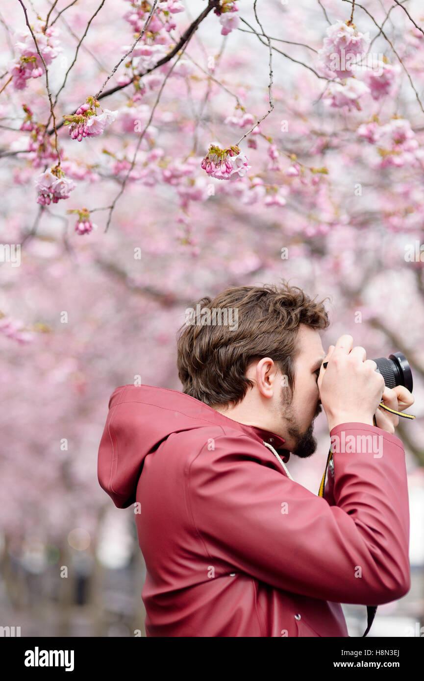 Jeune homme à prendre des photos sous les arbres en fleurs Photo Stock