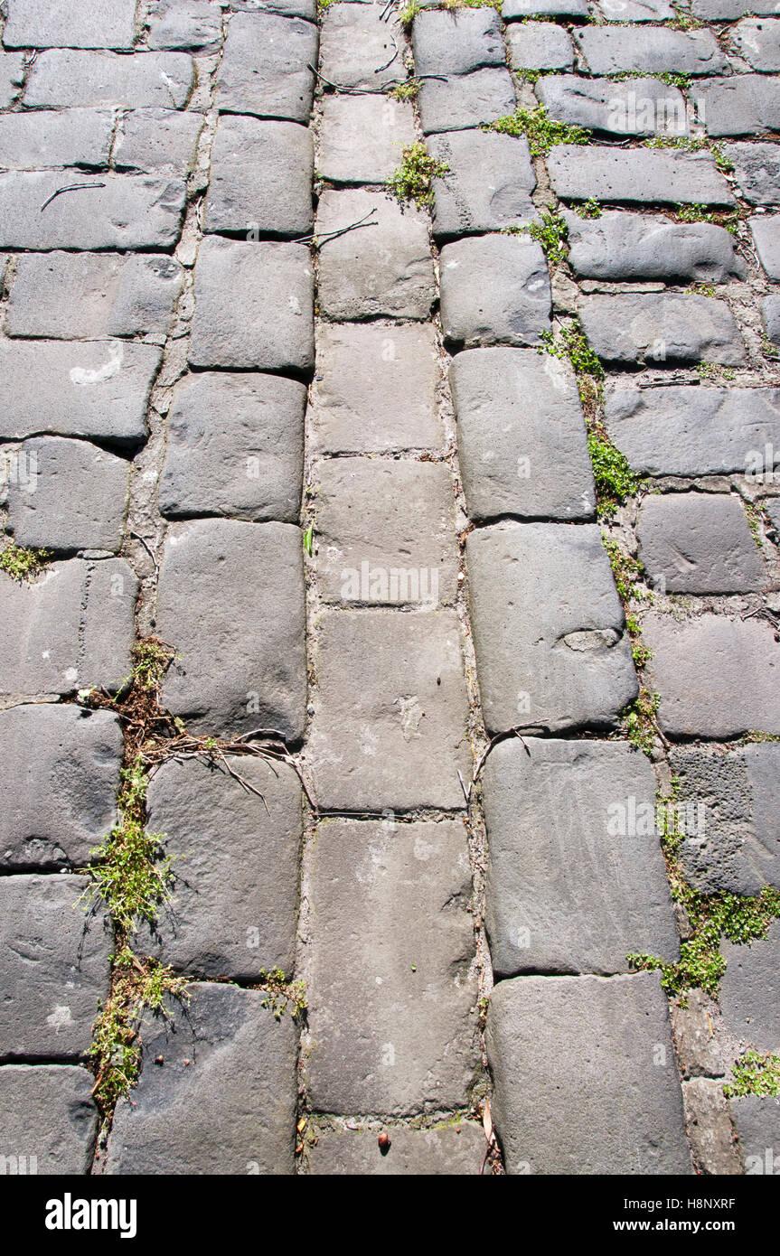 Pavés de pierre de forme une allée de l'époque victorienne dans la banlieue de Melbourne Photo Stock