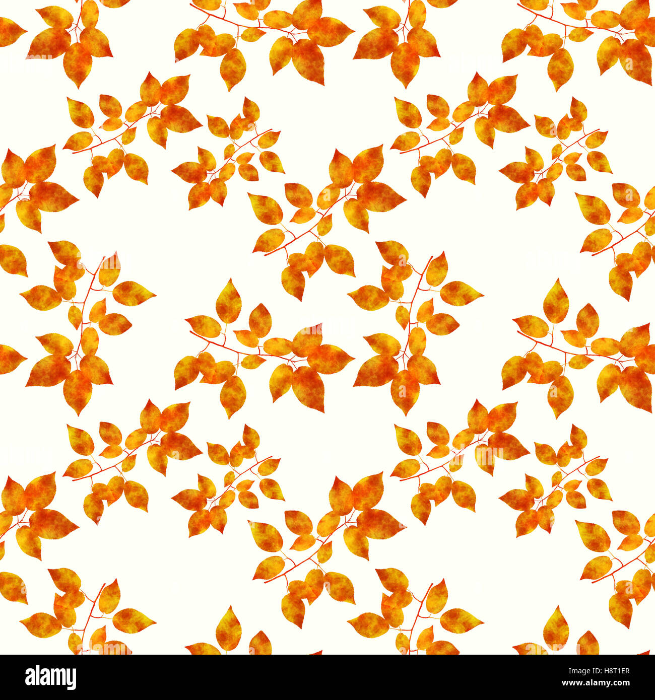 Les feuilles Orange motif transparent Photo Stock