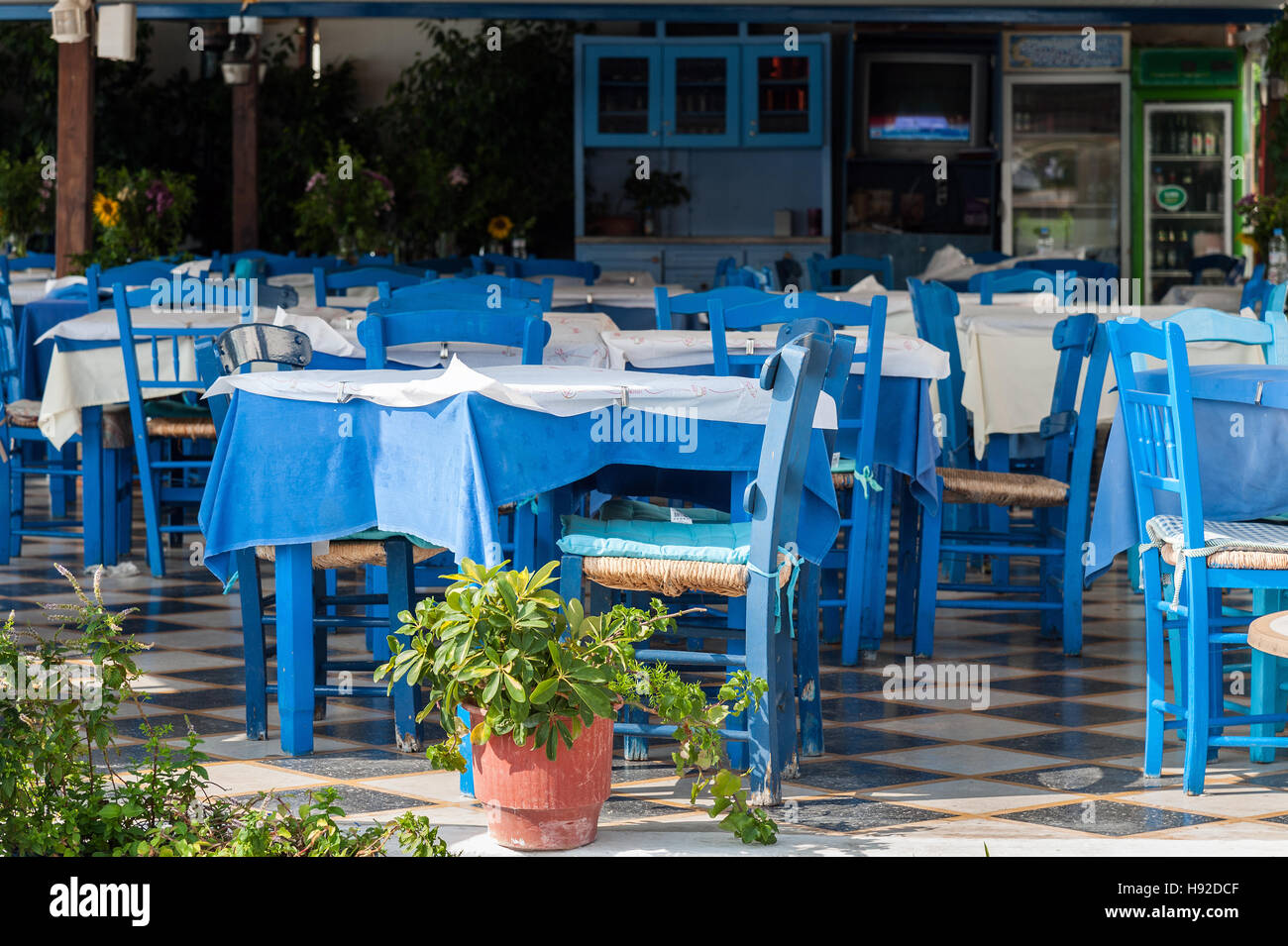 And Photosamp; Greek Table Blue Chairs Nnw0ymOv8