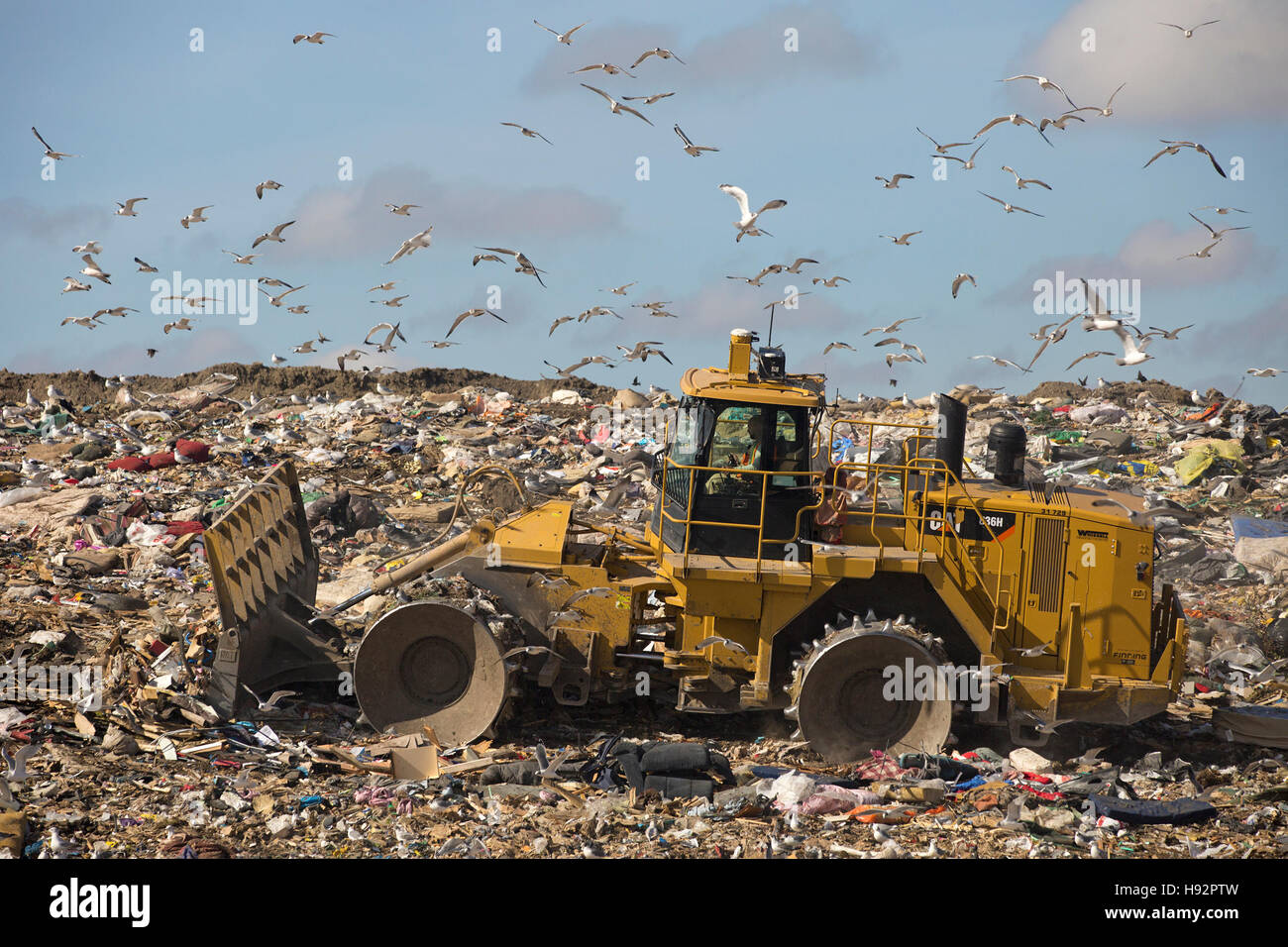 Trashmaster déménagement des ordures dans une cellule d'enfouissement active à l'installation Photo Stock